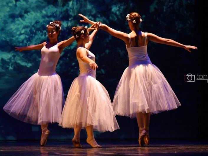 Dansa Espai d'Arts